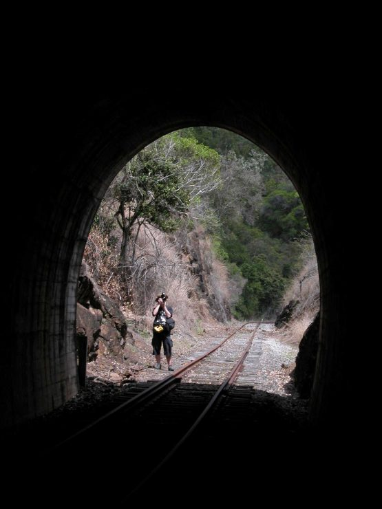 You will take plenty of photos while walking the tunnels on the Boyne Burnett Rail Trail