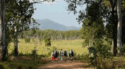 Gladstone District Bushwalkers logo walkers in australian bush