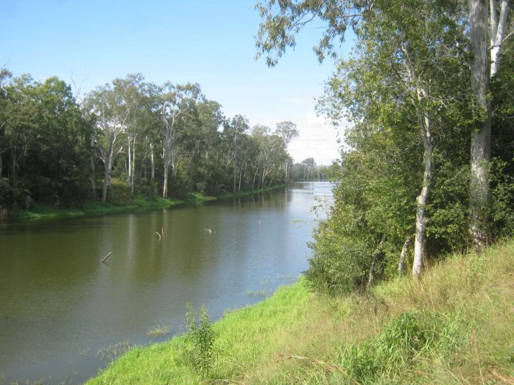 Reids Creek from corridor, Gayndah