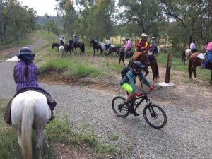 horse and bike rider on BVRT