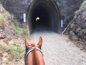 Tunnel on BVRT